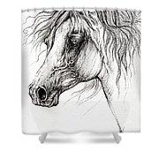 Arabian Horse Drawing 54 Shower Curtain