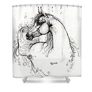 Arabian Horse Drawing 8 Shower Curtain by Angel  Tarantella