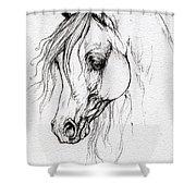 Arabian Horse Drawing Shower Curtain