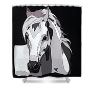 Arabian Horse With Hidden Picture Shower Curtain
