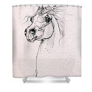 Arabian Horse Portrait 2014 02 25 Shower Curtain