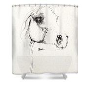 Arabian Horse Sketch 2014 05 24 Shower Curtain