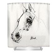 Arabian Horse Sketch 2014 05 28c Shower Curtain