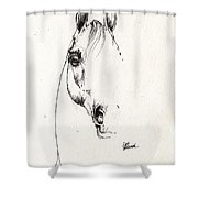 Arabian Horse Sketch 2014 05 29b Shower Curtain