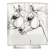Arabian Horses 2014 02 25 Shower Curtain