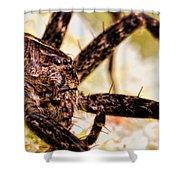 Arachnophobia Shower Curtain