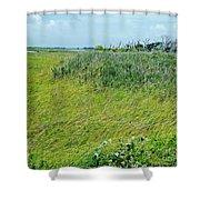 Aransas Nwr Coastal Grasses Shower Curtain