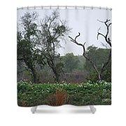 Aransas Nwr Landscape Shower Curtain