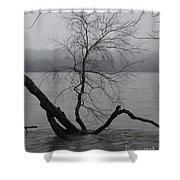 Arbor Island Shower Curtain
