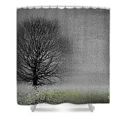 Arbrensens - V06gr Shower Curtain