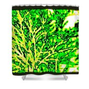 Arbres Verts Shower Curtain