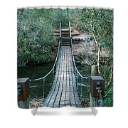 Arcadia Mill 1 Shower Curtain