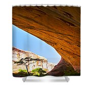 Arch 42 Shower Curtain