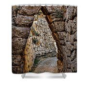 Arched Medieval Gate Shower Curtain