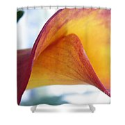 Archimedes Inspiration Shower Curtain
