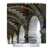 Architectural Artwork At Place De Vosges Shower Curtain