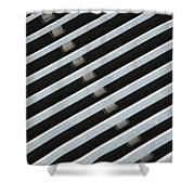 Architectural Detail Shower Curtain