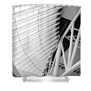 Architectural Details Shower Curtain