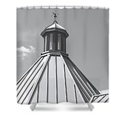 Architectural Gray Shower Curtain