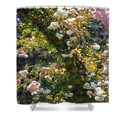 Archway Glorious Shower Curtain