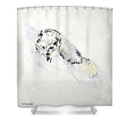Arctic Fox Kit Shower Curtain