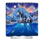 Arctic Harmony Shower Curtain