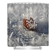 Arctic Pine Cone Porcupine Shower Curtain