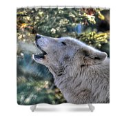 Arctic Wolf Song Shower Curtain by Skye Ryan-Evans