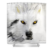 Arctic Wolf With Yellow Eyes Shower Curtain