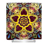 Arcturian Starseed Shower Curtain