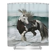 Ard Ri Shower Curtain