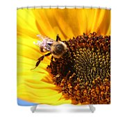 Are You Buzzing? Shower Curtain