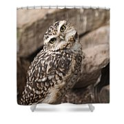 Are You Looking At Me? Shower Curtain