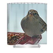Are You Sure You Want This Seed? Shower Curtain