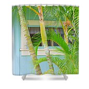 Areca Palms At The Window Shower Curtain