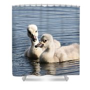 Aren't You Going To Share? Shower Curtain