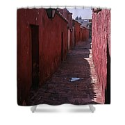 Arequipa    Peru   #12303 Shower Curtain