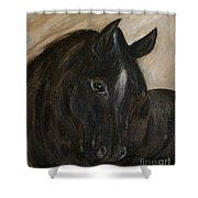 Arion Shower Curtain