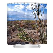 Arizona Afternoon Shower Curtain