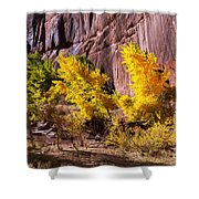 Arizona Autumn Colors Shower Curtain