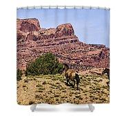 Arizona Beauties Shower Curtain