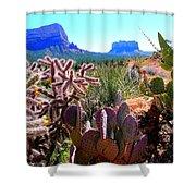 Arizona Bell Rock Valley N4 Shower Curtain