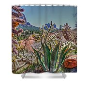 Arizona Bell Rock Valley N7 Shower Curtain