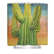 Arizona Cactus Shower Curtain