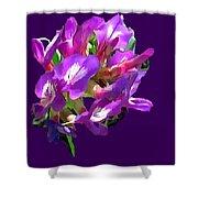 Arizona Desert Flowers Shower Curtain