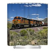 Arizona Express Shower Curtain