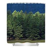 Arizona Forest Shower Curtain