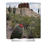 Arizona Icons Shower Curtain