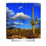Arizona Landscape 2 Shower Curtain