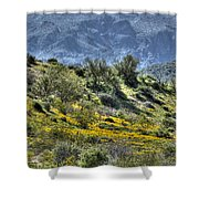 Arizona Spring Shower Curtain